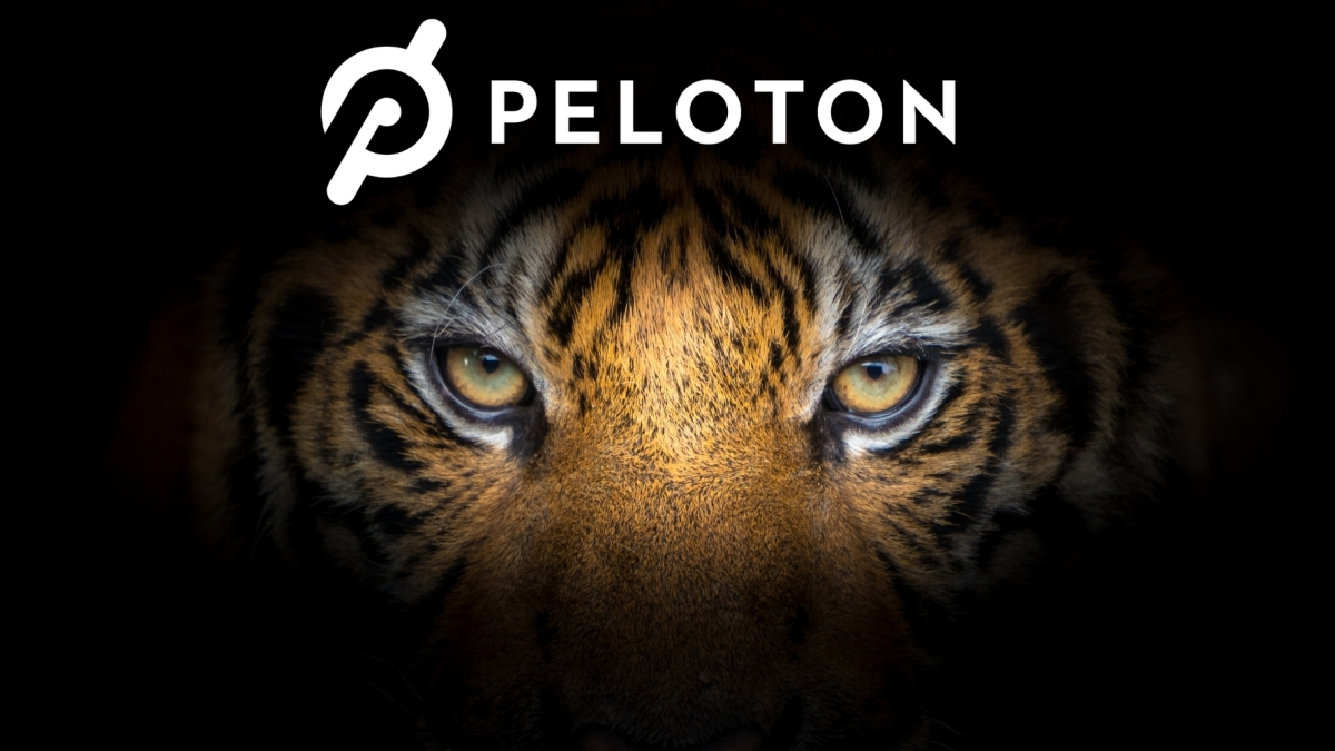 Peloton Tiger